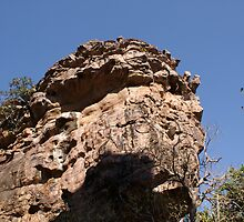 Rock formations BhimBhetka by ashishagarwal74