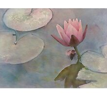 Ode to Claude Monet Photographic Print