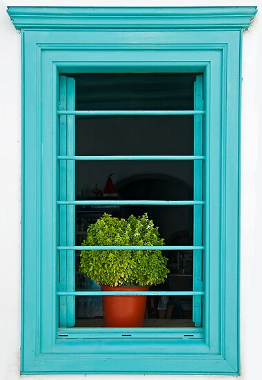 Window with basil by Konstantinos Arvanitopoulos