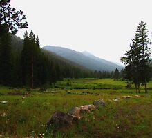Baker Creek Campsite #32 by Brenda Dahl