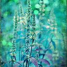 Textured Purple Loosestrife by Astrid Ewing Photography