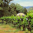 Vineyard View by Karen Ilari