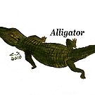 &quot;Aligator&quot;  by Carter L. Shepard by echoesofheaven