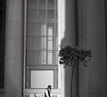 Deux objets isolés by Peter Denniston