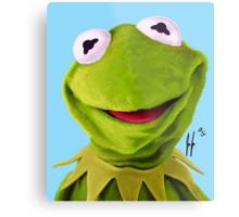 Mr. the Frog Metal Print