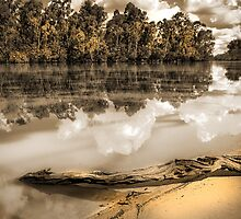 Riverbank by Tracie Louise