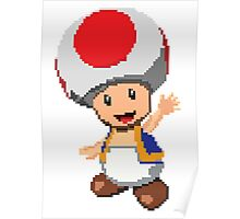 Pixel Toad Poster