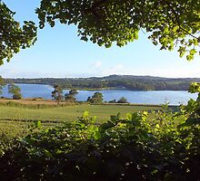 Ogston Reservoir by Paul  Green