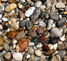 Wet, Colorful Beach Pebbles by Kenneth Keifer