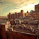 Rooftop Graffiti - Chinatown - New York City by Vivienne Gucwa