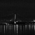 The Verrazano Bridge by photographist
