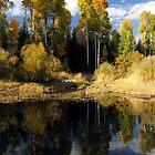 Peaceful Fall by Gina J