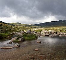 Snowy RIver near Kosciuszko by Timothy John Keegan