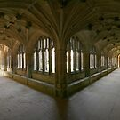 The Cloisters at Lacock Abbey by Amanda Clegg