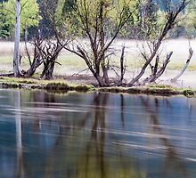 SLOW FOG - FAST WATER - Merced River, Yosemite NP by RGHunt