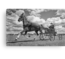 One Horse Power Metal Print