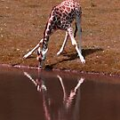 Reflection of drinking problem by Darren Bailey LRPS