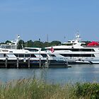 Martha's Vineyard Summer Parking Lot ... by Choux