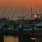 Harbor Sunrise by Sally Kady