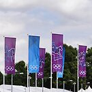 Eventing Banners by Karen Martin