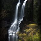Carrington Waterfall by Rookwood Studio ©