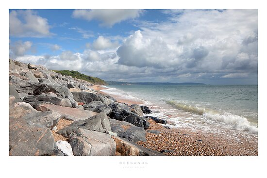 Beesands by Andrew Roland