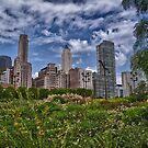 Chicago Sky by Adam Northam