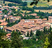 Rooftops of Paciano, Umbria, Italy by Andrew Jones
