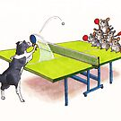 Chinchilla Ping Pong by Stuart F Taylor