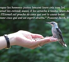 Ps. 34:18, 19 french inspirational card by hummingbirds
