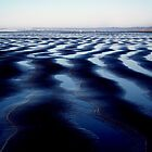 Ocean Shores, Washington - Digital Print by Emily Jones-Blachowicz
