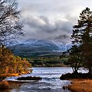 Winter Comes to Cairngorm by jacqi