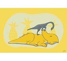 Protoceratops and Shuuvuia Photographic Print