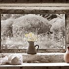 Flowers In The Window by Patricia Jacobs CPAGB LRPS BPE2