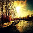 alzette river 7 by Diana Calvario