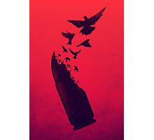 Bullet Birds Photographic Print