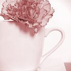 Carnation in Teacup, Red by MelissaSue