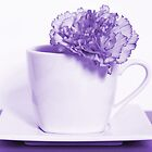 Carnation in Teacup, Purple by MelissaSue