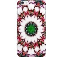 Abstracted Roses Mandala 3 iPhone Case/Skin