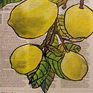 Newspaper Lemons by Alexandra Felgate