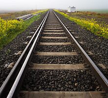 Track to nowhere by Hans Kawitzki