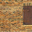 Door or Window? by vilaro Images