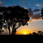 australian sillhouette by shaun965