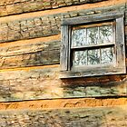 Windows, Cades Cove, Smoky Mountains National Park by Mike Koenig