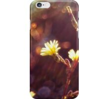 Sunshine and flowers iPhone Case/Skin