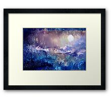 Moondance in the Night Garden Framed Print