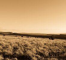 Oregon High Desert by Allan  Erickson