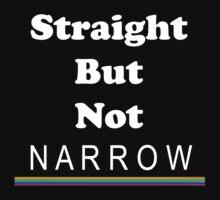 Straight But Not Narrow by Chris  Bradshaw