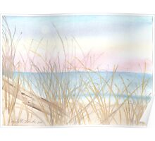 Reeds by the Ocean Poster
