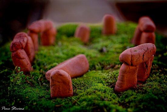 Stonehenge ~ Macro by Pene Stevens